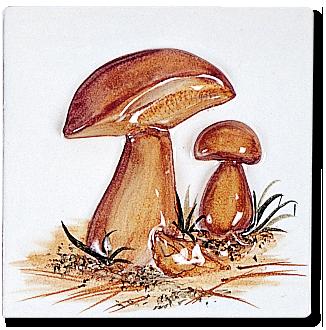carrelage d coration carr 13 champignons motif. Black Bedroom Furniture Sets. Home Design Ideas