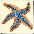 Carrelage - Décoration - Décor 11x11 CoquillageA -Motif - Design - Faïence de Provence à Salernes